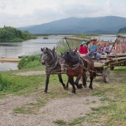 Ježa konjev in vožnja z lojtrnikom-00001