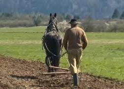 Ježa konjev in vožnja z lojtrnikom-00002