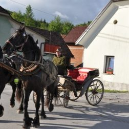 Ježa konjev in vožnja z lojtrnikom-00003
