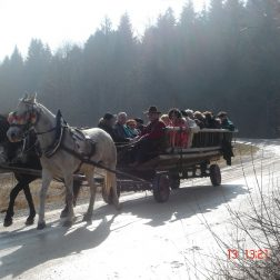 Ježa konjev in vožnja z lojtrnikom-00005