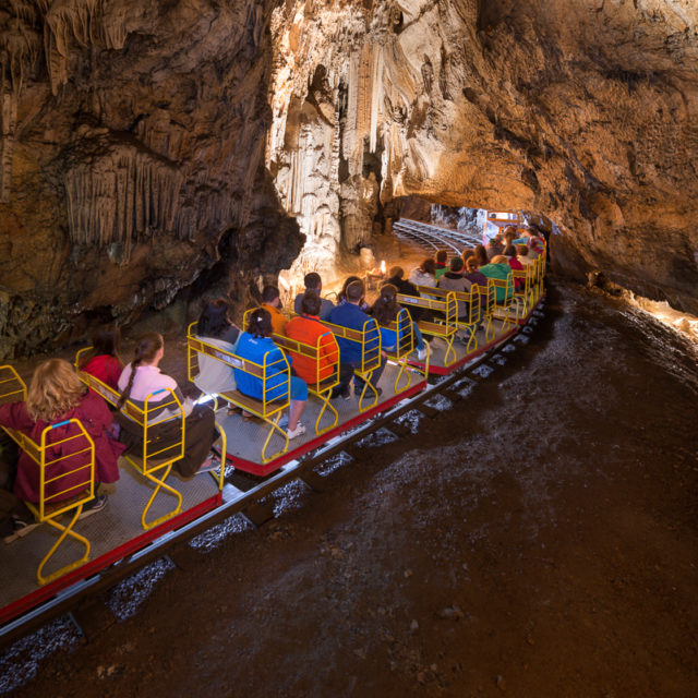 Höhle von Postojna und Vivarium