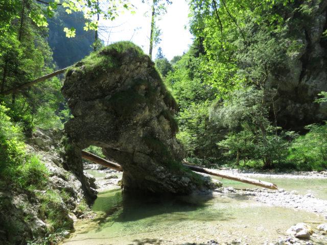 Altopiano di Vidovska e Iška