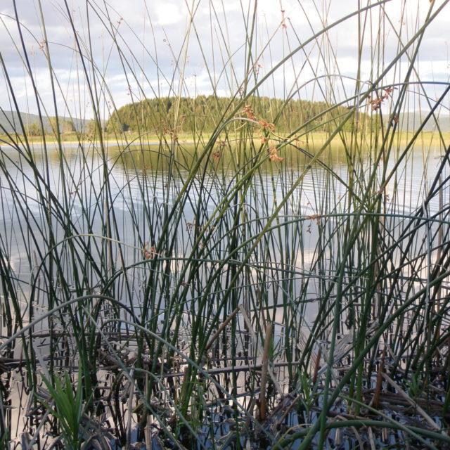 Notranjska Regional Park