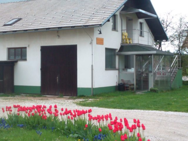 Accommodations Lastovka, Nova Vas