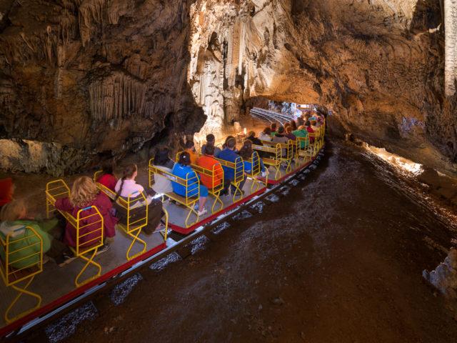 Grotte di Postumia e vivaio